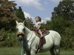 Three_year_old_girl_riding_an_Arabian_horse