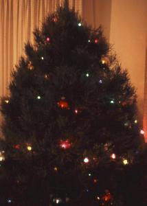 Chrsitmas Tree